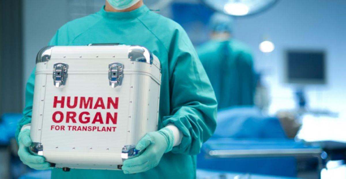 operation organ