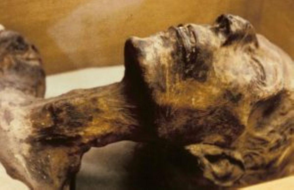 Mumiya sohranilas blagodarya klimatu i propitke iz archovyh dosok. Foto Kloop