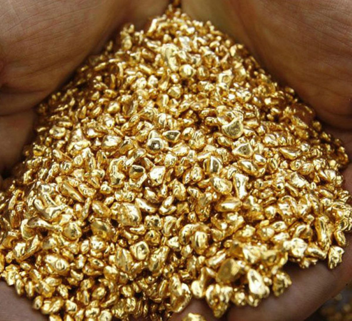 Purest natural gold for sale