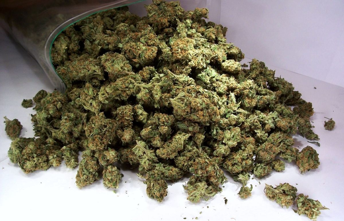 Marihuana posledstviya vred i vliyanie marihuany na organizm