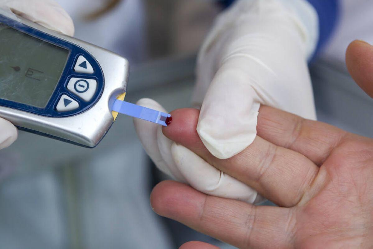ekspress testy na holesterin i glyukozu