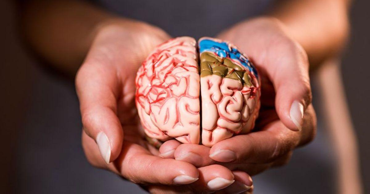 mozg gormony i nastroenie