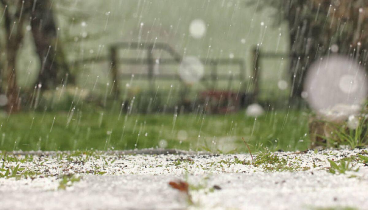 snow cold weather hail garden scotland spring gate bokeh flare badweather springtime unseasonal ayrshire sleet wintery hailstones stewarton eastayrshire 1017443