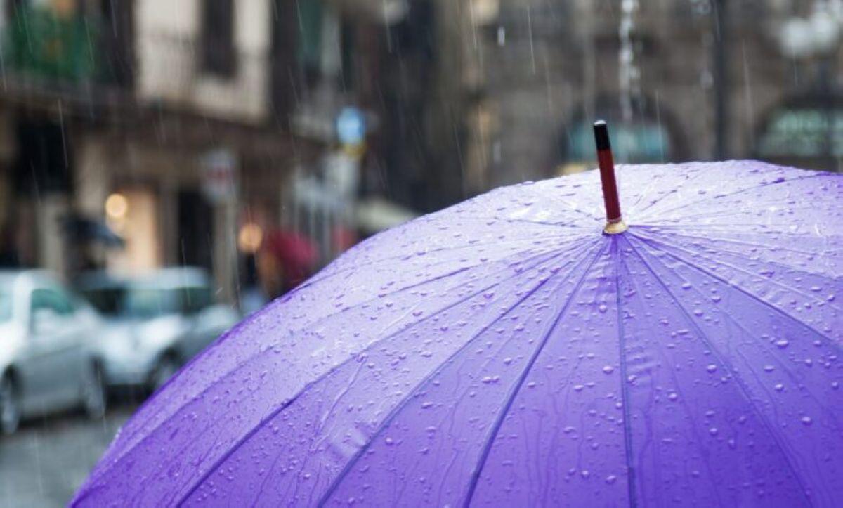 shutterstock umbrella