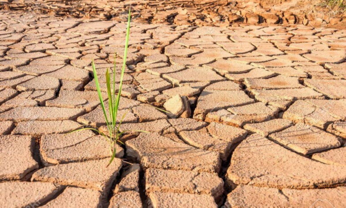 terra arsa agricoltura siccita caldo